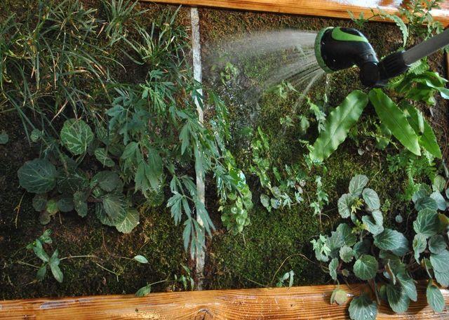 Il-muschio-nei-giardini-verticali