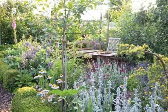 Le-funzioni-terapeutiche-dei-giardini-verticali