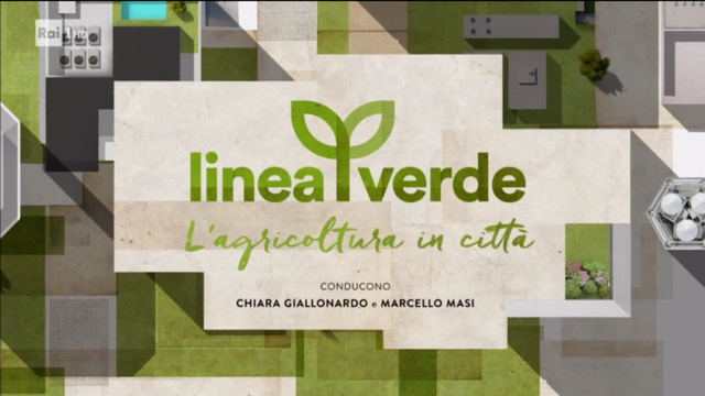 Linea-Verde-intervista-Life-Panel