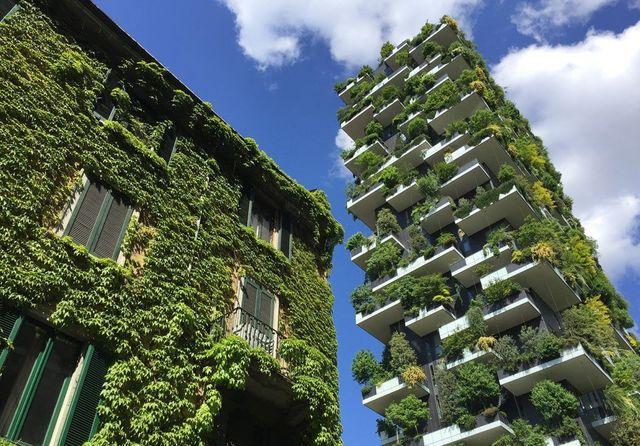 Verde-Verticale-contro-l'inquinamento-dell'aria